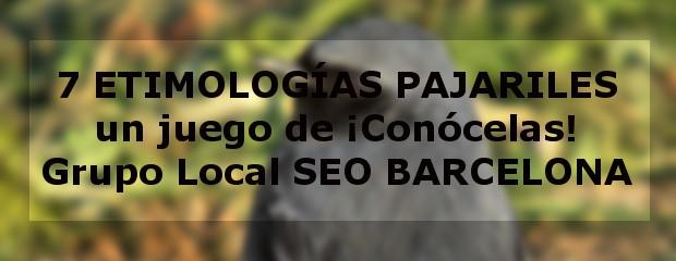 7 etimologías pajariles - Grupo Local SEO BArcelona