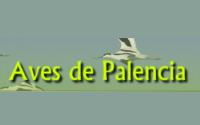 Aves de Palencia