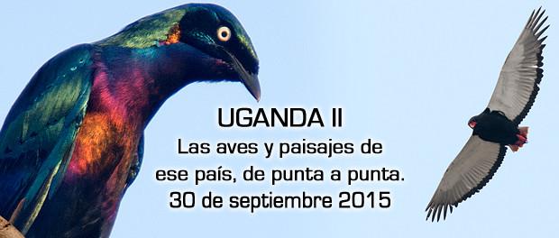 Las aves y paisajes de Uganda de punta a punta