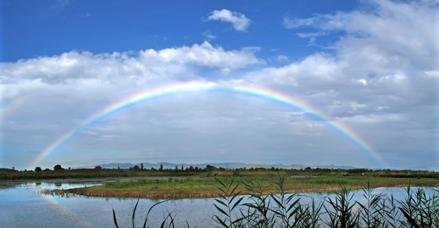 Arco iris en el Delta del Llobregat. Foto de Salva Sole