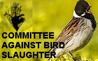Comité contra la matanza de aves (CABS)