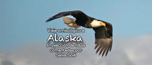 Viaje ornitológico a Alaska - jueves 30 de marzo 2017 a las 18:30