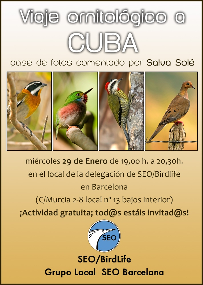 Cartel pase Cuba GL SEO 2014