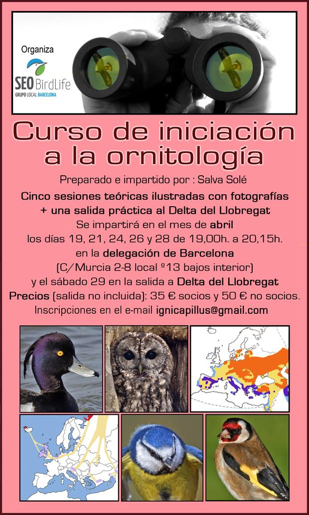 Curso de iniciación a la ornitología – abril 2017 - Grupo Local SEO Barcelona