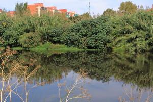 El otro río de Barcelona – río Besòs – Grupo Local SEO Barcelona