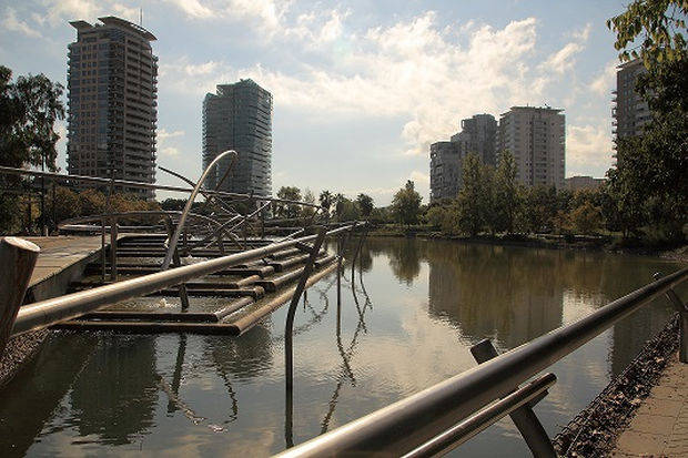Pajarear en Barcelona: el parque de Diagonal Mar
