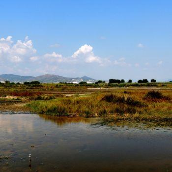 marisma Remolar-Filipines desde el aguait de la Maresma