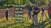 Salida ornitológica Araós-Bonaigua junio 2019 – Grupo Local SEO Barcelona