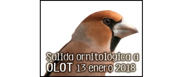 Excursión ornitológica a Olot 13 enero 2018