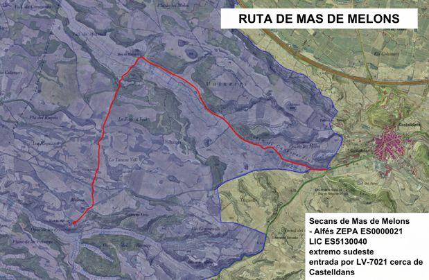 Grupo Local SEO Barcelona, rutas por los secanos de LLeida - ruta 3: Secans de Alfés - Mas de Melons (zona Mas de Melons)