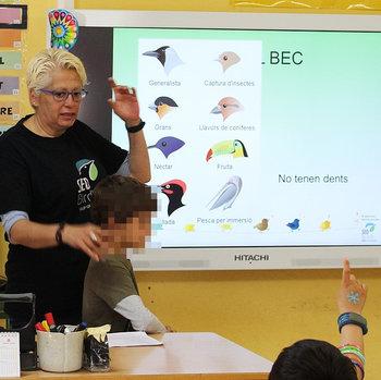 Ciclo de charlas 2017: divulgación en escuelas - Grupo Local SEO Barcelona