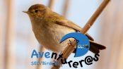 Salida a la Vall d'Horta con el Club Aventurer@s - octubre 2016