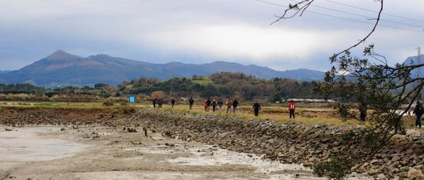 Crónica urgente de una salida ornitológica al Parque natural de las Marismas de Santoña, Victoria y Joyel