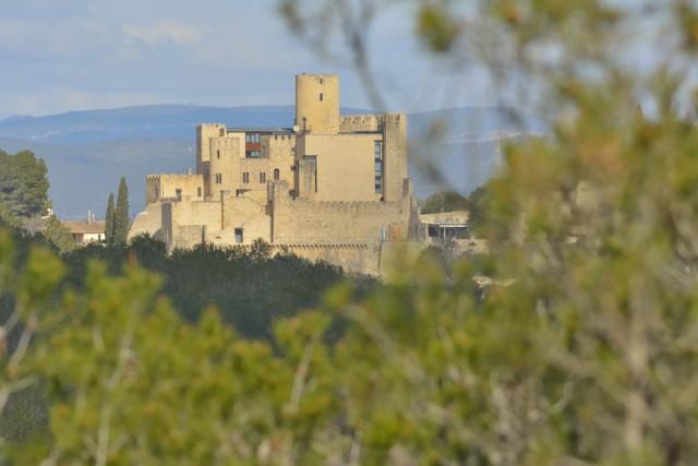 Castillo de Castellet i la Gornal (Foto de Jose Antonio Luna)