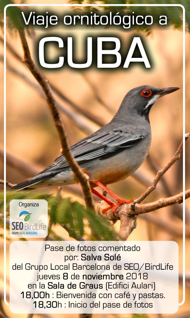Pase de fotos comentado Viaje Ornitológico a Cuba – 8 de noviembre 2018 - Grupo Local SEO Barcelona