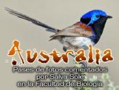 Charlas: Viaje ornitológico y naturalista a Australia,15 y 22 de febrero 2018