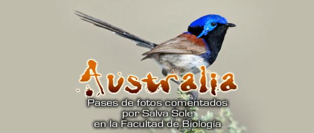 Charlas: Viaje Ornitológico y naturalista a Australia febrero 2018
