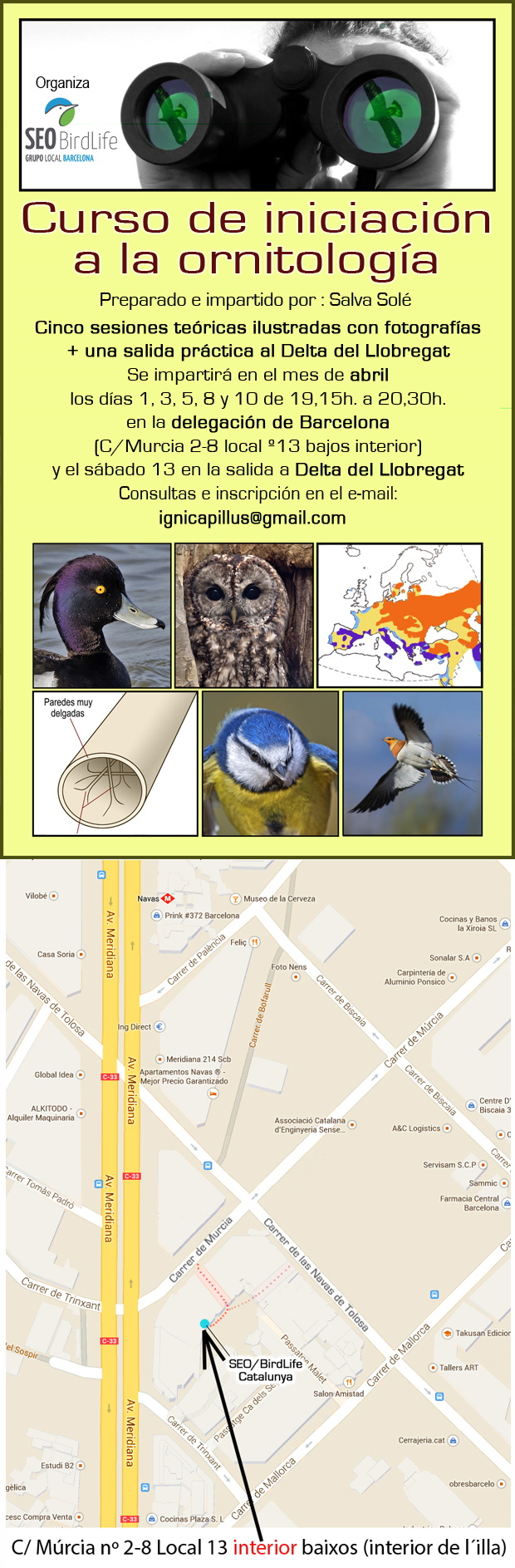 Curso de iniciación a la ornitología - abril 2019