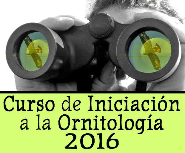 Curso de iniciación a la ornitología, septiembre 2016 Barcelona