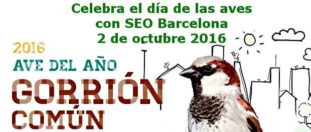 2 de octubre Día de las Aves 2016