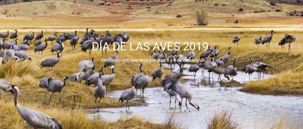 Día Mundial de las Aves 2019 domingo 6 de octubre
