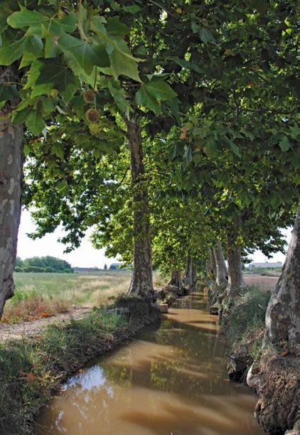 El Delta a vista de pájaro 10 - Patrimonio cultural arquitectura y cultura