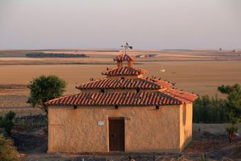 En busca de Avutardas por Villafáfila junio 2017