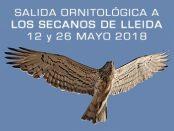 Excursión ornitológica a las Estepas de Lleida mayo 2018