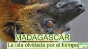 MADAGASCAR La isla olvidada por el tiempo