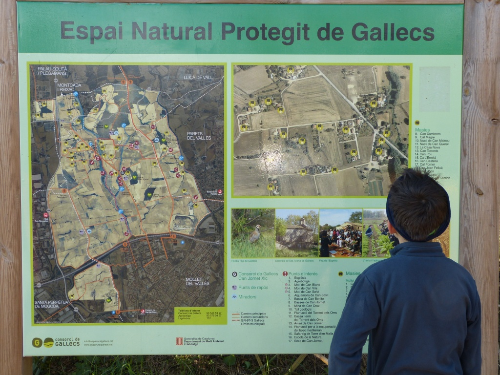 Crónica Aventurera por el espai natural de Gallecs
