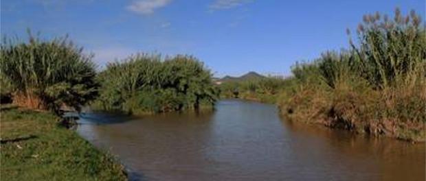 Río Llobregat entre Bellvitge y Sant Boi - Grupo Local SEO Barcelona