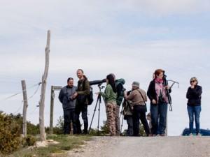 Maestrazgo 2015 –  El grupo Local SEO Barcelona en sierra Palomita