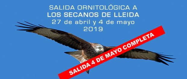 Salida ornitológica a los secanos de Lleida 27 de abril y 4 de mayo de 2019