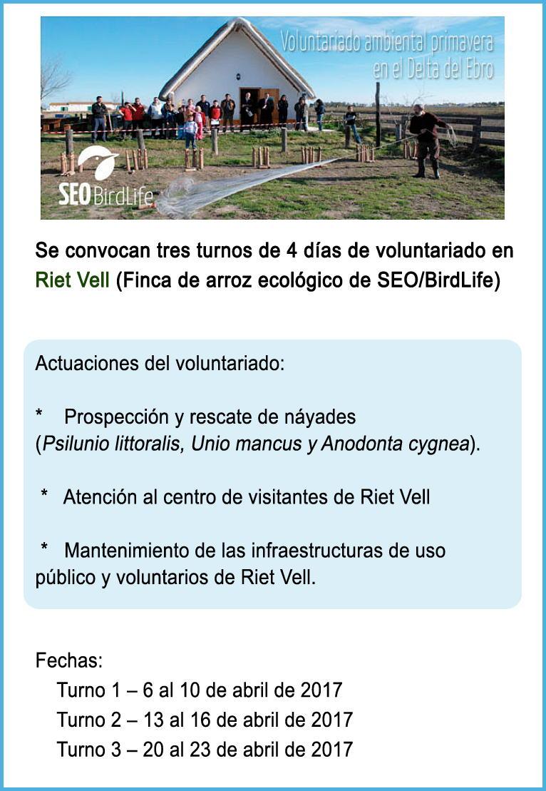 Voluntariado ambiental de primavera en el Delta del Ebro - SEO/Birdlife