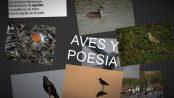 Aves y Poesía - Fotos Javier Ruiz