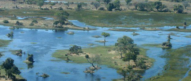 Delta del Okawango