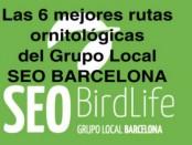 Las 6 mejores rutas ornitológicas del Grupo Local SEO BARCELONA