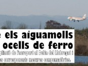 Sobre el aiguamolls volen ocells de ferro - Berta Castella 2012