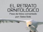 """Charla """"El retrato ornitológico"""" - noviembre 2016 - Grupo Local SEO Barcelona"""