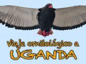 Charla viaje ornitológico a Uganda - 25 de mayo 2017
