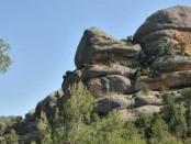 Crónica de una excursión ornitológica por el Montsant
