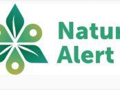 Ciencia ciudadana y proyecto IBAs: Natura Alert