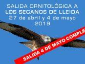 Excursiones ornitológicas a los secanos de Lleida - primavera 2019 – Grupo Local SEO Barcelona